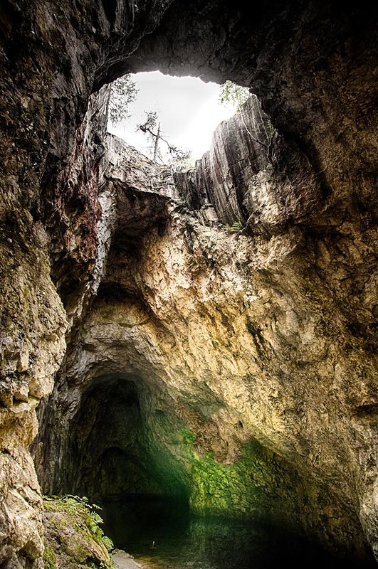 Inside a medium sized cave with sky hole shedding light from above